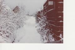 Januar_1982_KL_01 - Kopi