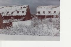 Januar_1982_KL_03 - Kopi